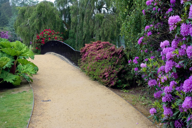 Zahradní můstek s pěnišníky