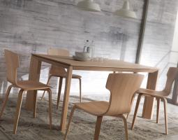 Dřevěný jídelní stůl se židlem