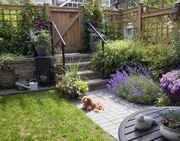 Rozkvetlá zahrada s levandulí a petúniemi